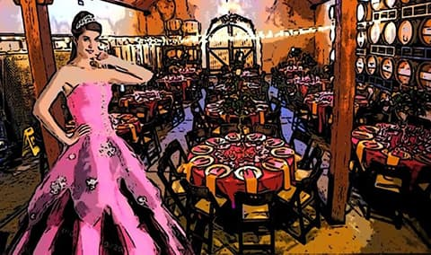 Pink  Black Charity Ball Image