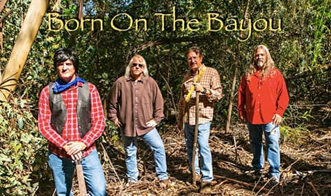 VezerStock Concert Series - Born on the Bayou CCR Tribute Band Image
