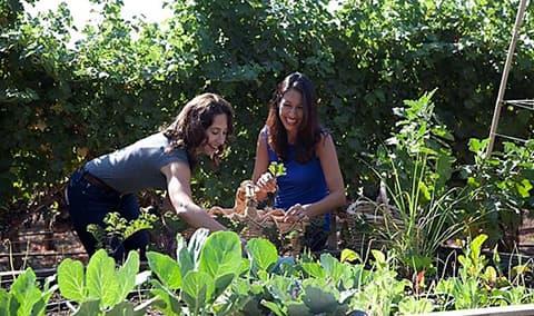 Garden to Table: A Florist Workshop