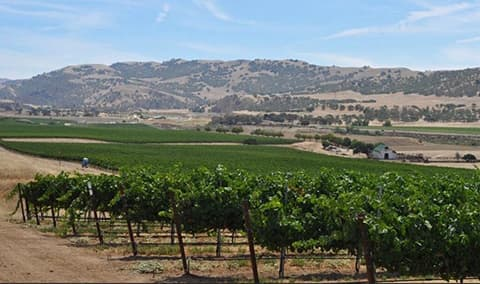 NEW DATE Pedregal in the Spring, Winemakers Dinner Image