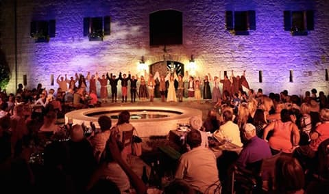 Celebrating 'Shakespeare Under the Stars' at Buena Vista Winery