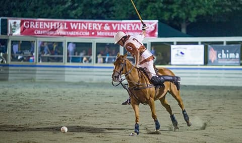 Twilight Polo at Great Meadow Image