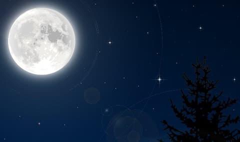 Full Moon Tour  Vineyard Dinner Image