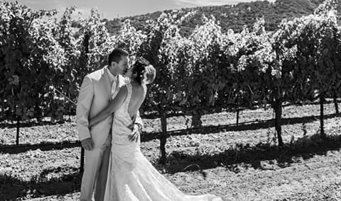 Vezer Family Vineyard - Bridal Fair Image