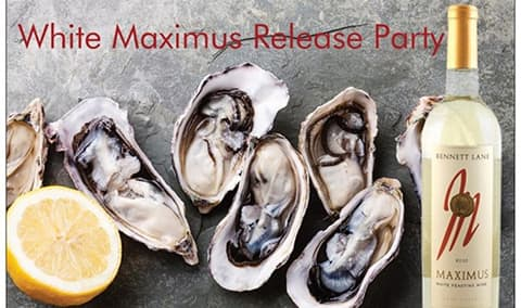 Maximus Release Party Image