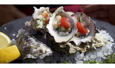 Sparkling & Oysters!