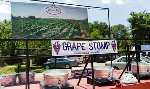 Wine  Roses Festival Image