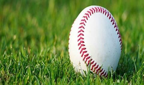 Giants Baseball Image
