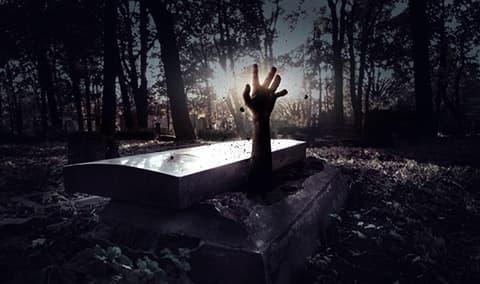 Murder at Twilight Murder Mystery Dinner Image