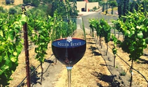 Verticle Tasting of Keller Estate Pinot Noir!