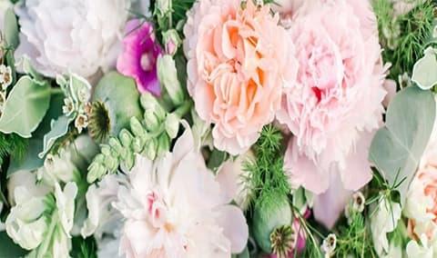 Fte de la Fleur Image
