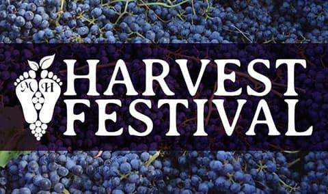 Harvest Festival Daytime Harvest Image