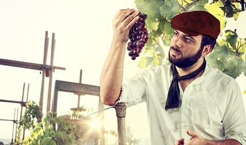 Harvest Festival Who Killed the Winemaker Murder Mystery Dinner Image