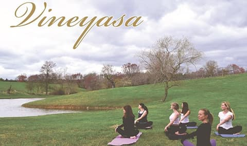 Vineyasa Yoga  Wine Image