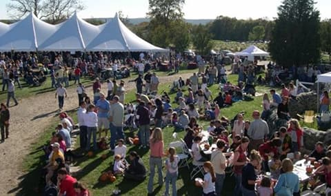 Harvest Festival - October 6th  7th  11am - 5pm Image