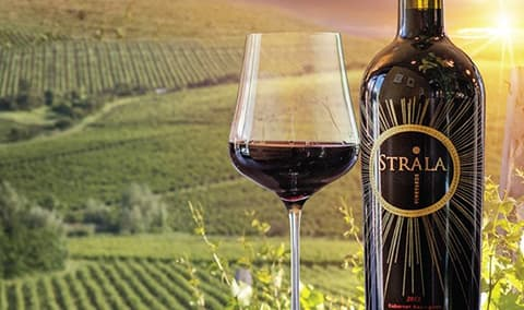 Strala Wine Release Party