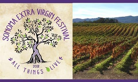 BR Cohn Sonoma Extra Virgin Festival Image