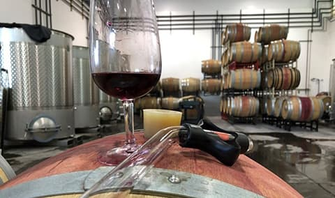 Discovering the Cellar Barrel Tasting with the Winemaker Image
