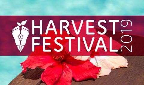 Harvest Festival Terror in Tahiti Murder Mystery Dinner Image
