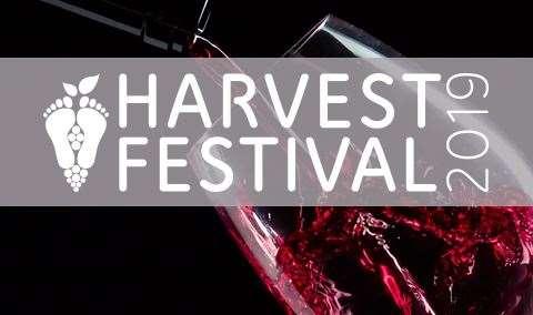 Harvest Festival Grand Finale Gala Image