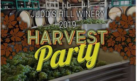 2019 Harvest Party at Judds Hill Winery Image