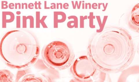 Pink Party Image