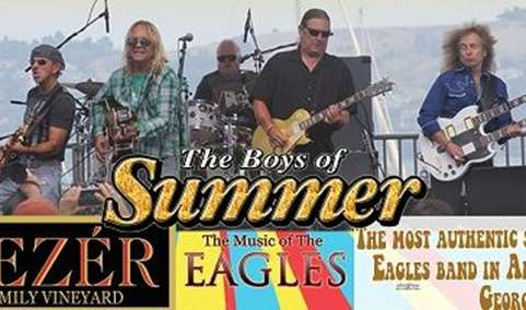 VEZERSTOCK Wine  Live Music Series - Boys of Summer Image