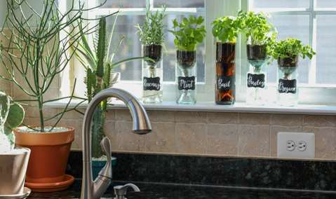 Wine  Design Self Watering Herb Planter Image