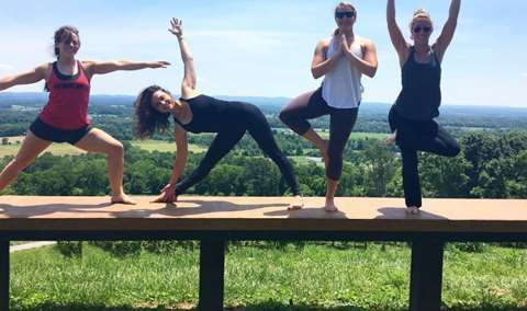 Vinyasa with a View Image