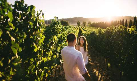 2020 Passport to Napa Valley Wine Country Image