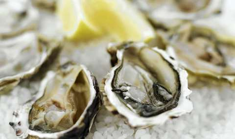Oyster Palooza with Drakes Bay Oyster Company Image