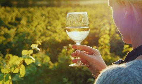 St. Patricks Food + Wine Pairing