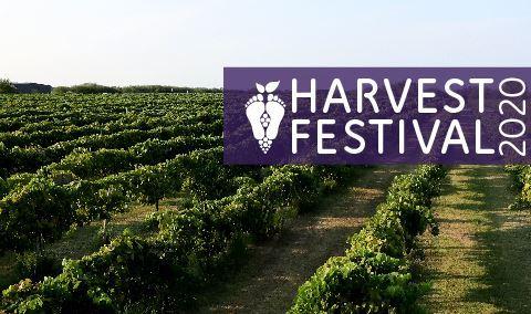 Harvest Festival: Moonlit Harvest
