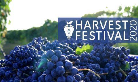 Harvest Festival: Daytime Harvest