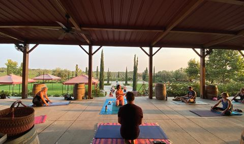 Yoga in the Vines with COIL Yoga Img