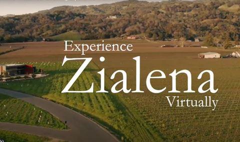 Virtual Tasting Experience