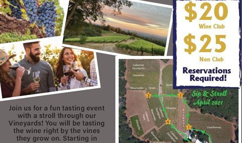 Sip & Stroll through the Vineyard