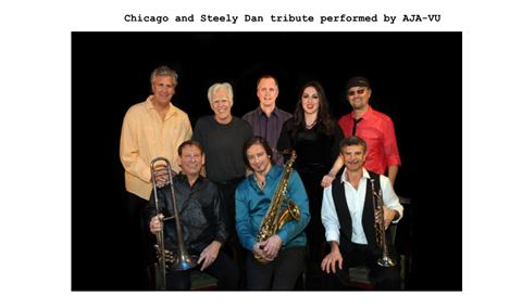 VEZERSTOCK Wine & Live Music Series - Chicago and Steely Dan tribute Img