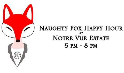 Naughty Fox #2 Img