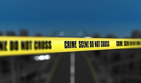 Harvest Festival: Trailer Park Tragedy Murder Mystery Dinner Img