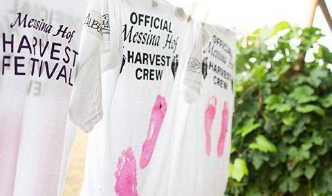 Hill Country Harvest Festival: Daytime Harvest Img