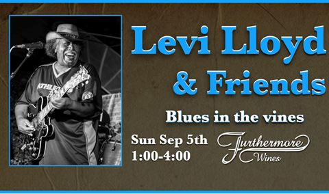 Blues in the Vines : Levi Loyd & Friends Img