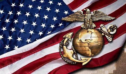246th Marine Corps Birthday Ball Img