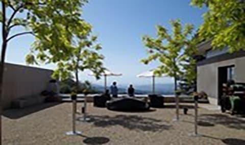 2012 CADE Estate Cabernet Sauvignon Release Party