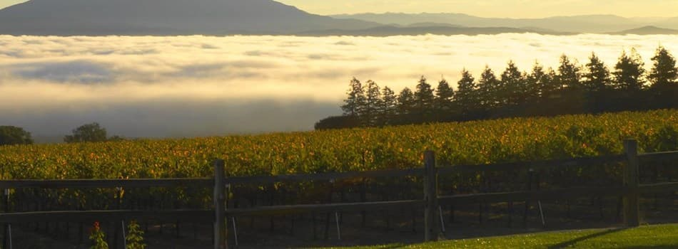 Purchase Tickets to Sonoma County Tasting Pass for Two! at Priority Wine Pass on CellarPass
