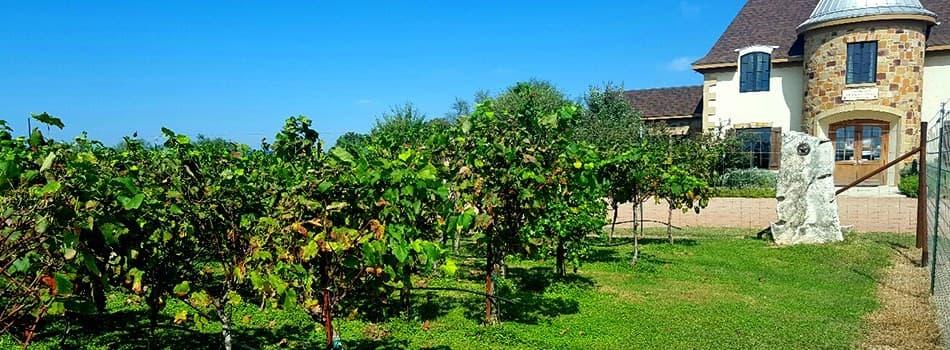 Wine Walk 4 Nimitz