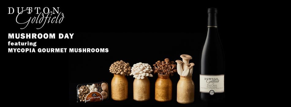 Mushroom Day