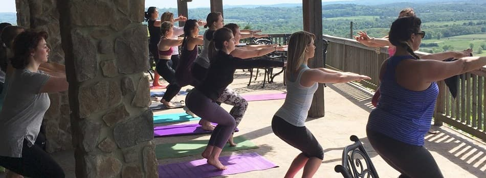 Purchase Tickets to Vinyasa with a View at Bluemont Vineyard on CellarPass