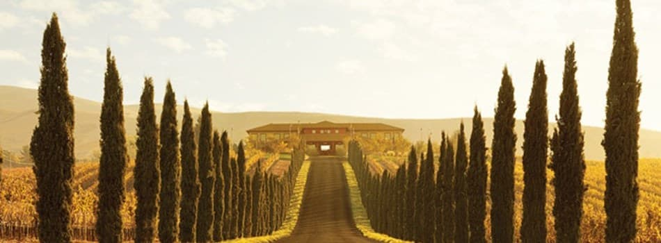 Purchase Tickets to Summer Sunset Supper with Winemaker Linda Trotta at Jamieson Ranch Vineyards on CellarPass