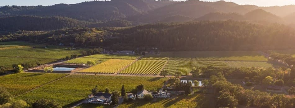 Purchase Tickets to A Celebration of Harvest, Portfolio Tasting at Benessere Vineyards on CellarPass